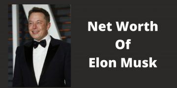 Net Worth Of Elon Musk