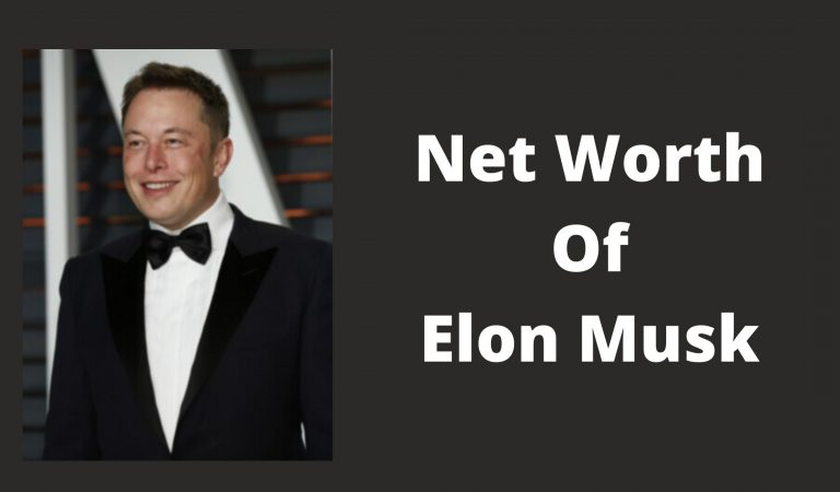 How Much Is The Net Worth Of Elon Musk 2021?