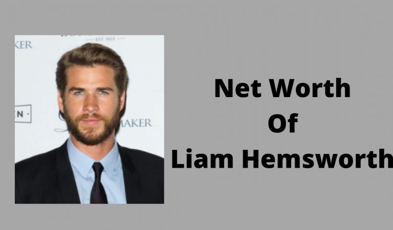 How Much Is The Net Worth Of Liam Hemsworth 2021?