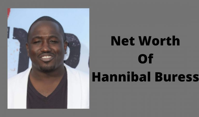 How Much Is The Net Worth Of Hannibal Buress 2021?