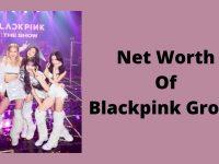 Net Worth Of Blackpink Group